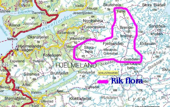 hjelmeland kart Botanikk.no: Vormedalsheia, Hjelmeland
